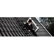 Roof exit window - bim